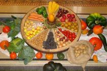 Früchte der Erde - Erntedank